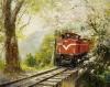 2006油畫比賽-阿里山春櫻